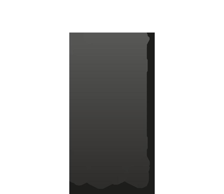 ScanBox-Custom-Made
